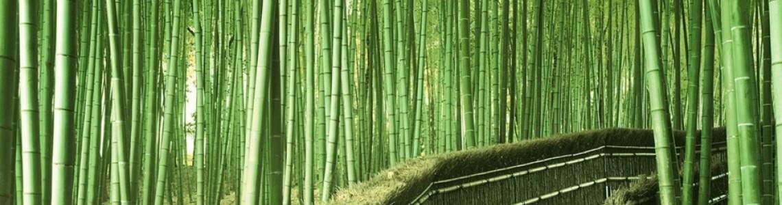 Bambu İpliğinin Kullanım Alanları ve Özellikleri